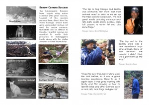 Balanggarra WILDLIFE Booklet Page Example