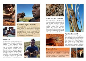 Karajarri WILDLIFE Booklet Page Example