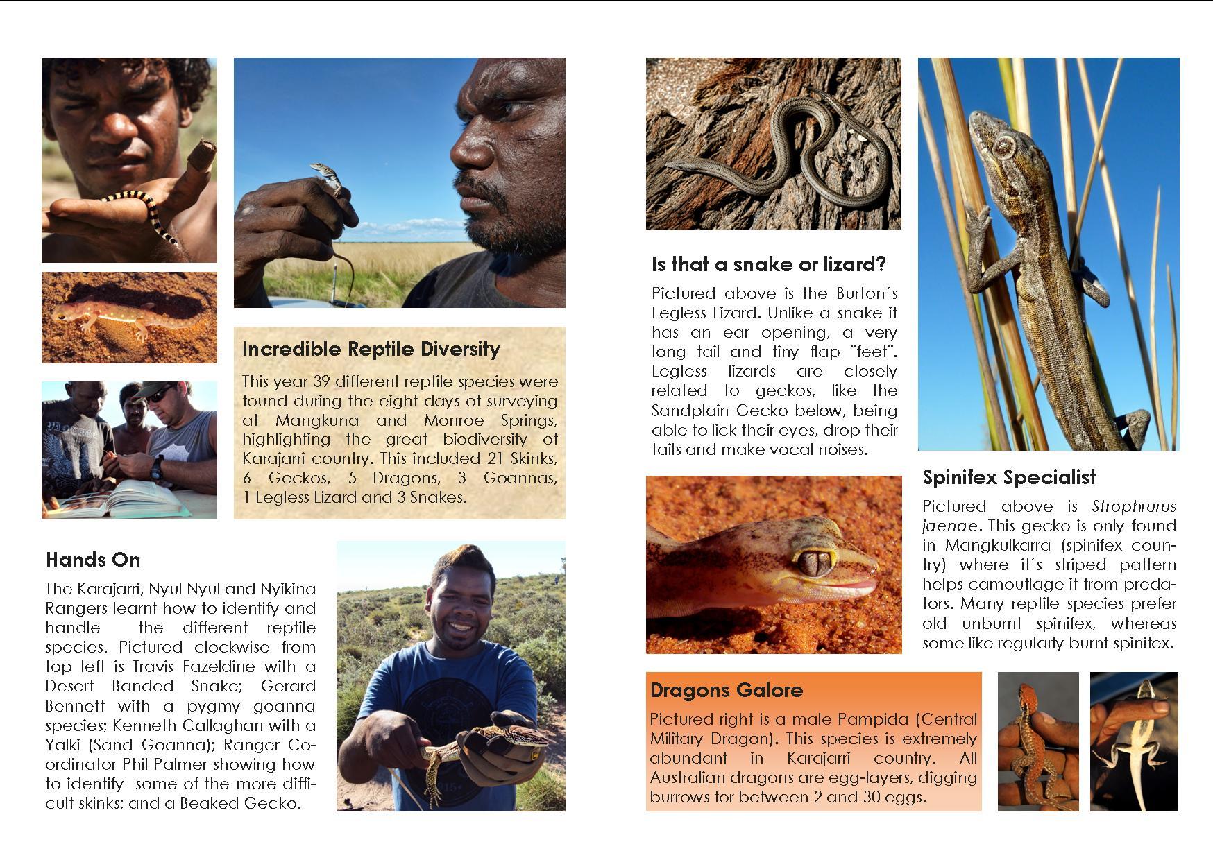 kimberley rangers murray wildlife