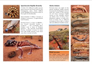Ngurrara WILDLIFE Booklet Page Example